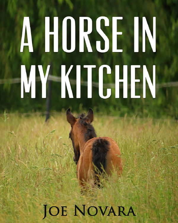 A Horse in My Kitchen (My First Horse Series: Book 6)